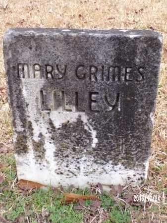 GRIMES LILLEY, MARY - Dallas County, Arkansas | MARY GRIMES LILLEY - Arkansas Gravestone Photos