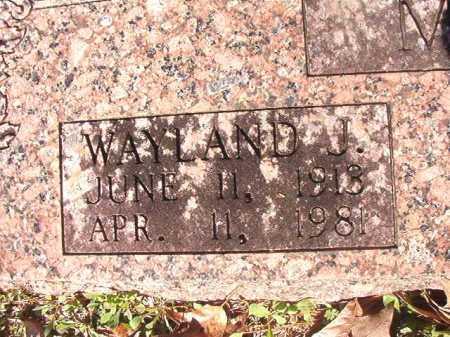 MAHAN, WAYLAND J - Dallas County, Arkansas | WAYLAND J MAHAN - Arkansas Gravestone Photos