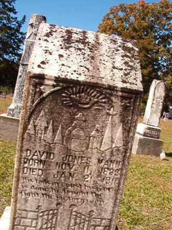 MANN, DAVID JONES - Dallas County, Arkansas | DAVID JONES MANN - Arkansas Gravestone Photos