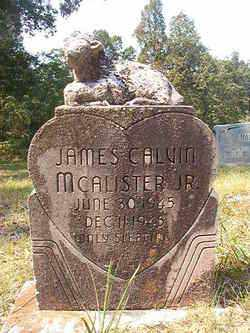 MCALISTER, JR, JAMES CALVIN - Dallas County, Arkansas | JAMES CALVIN MCALISTER, JR - Arkansas Gravestone Photos