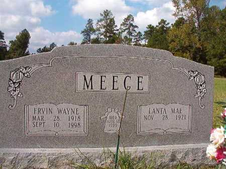 MEECE, ERVIN WAYNE - Dallas County, Arkansas | ERVIN WAYNE MEECE - Arkansas Gravestone Photos