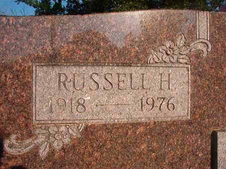 MERCER, RUSSELL H - Dallas County, Arkansas | RUSSELL H MERCER - Arkansas Gravestone Photos