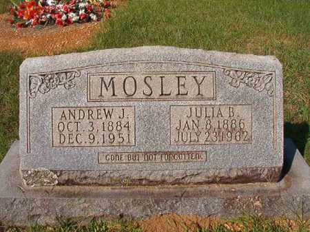 MOSLEY, ANDREW J - Dallas County, Arkansas | ANDREW J MOSLEY - Arkansas Gravestone Photos