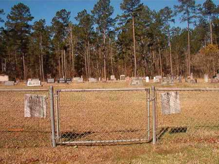 *MOUNT OLIVET, CEMETERY - Dallas County, Arkansas | CEMETERY *MOUNT OLIVET - Arkansas Gravestone Photos