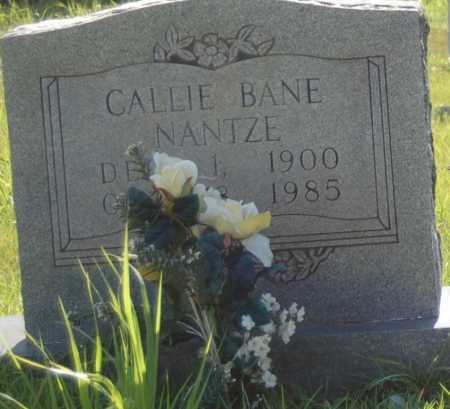 BANE NANTZE, CALLIE - Dallas County, Arkansas | CALLIE BANE NANTZE - Arkansas Gravestone Photos