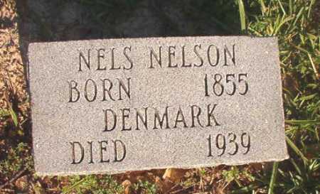 NELSON, NELS - Dallas County, Arkansas | NELS NELSON - Arkansas Gravestone Photos