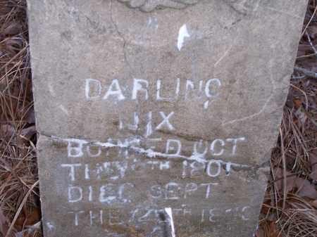 NIX, DARLING - Dallas County, Arkansas | DARLING NIX - Arkansas Gravestone Photos