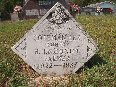 PALMER, COLEMAN LEE - Dallas County, Arkansas | COLEMAN LEE PALMER - Arkansas Gravestone Photos