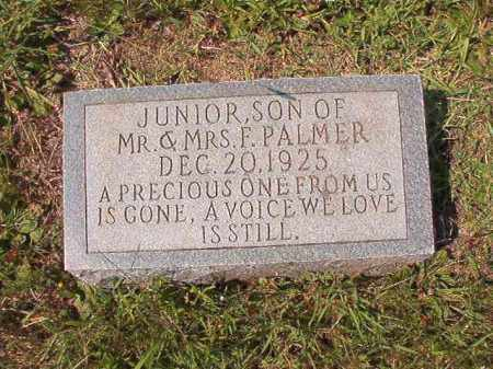 PALMER, JUNIOR - Dallas County, Arkansas | JUNIOR PALMER - Arkansas Gravestone Photos