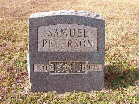 PETERSON, SAMUEL - Dallas County, Arkansas | SAMUEL PETERSON - Arkansas Gravestone Photos