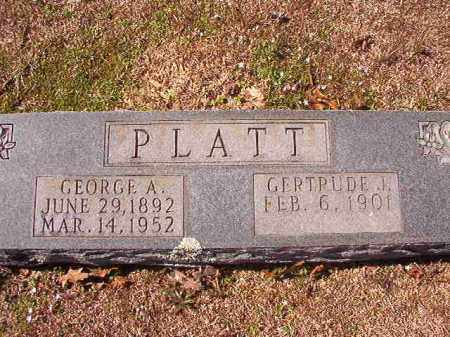 PLATT, GEORGE A - Dallas County, Arkansas | GEORGE A PLATT - Arkansas Gravestone Photos