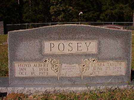 POSEY, CLARA - Dallas County, Arkansas | CLARA POSEY - Arkansas Gravestone Photos