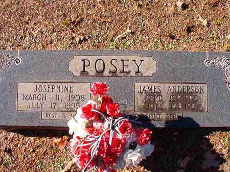POSEY, JAMES ANDERSON - Dallas County, Arkansas | JAMES ANDERSON POSEY - Arkansas Gravestone Photos
