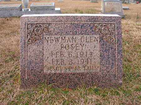 POSEY, NEWMAN GLEN - Dallas County, Arkansas | NEWMAN GLEN POSEY - Arkansas Gravestone Photos