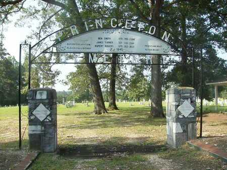 *PRINCETON, CEMETERY GATE - Dallas County, Arkansas | CEMETERY GATE *PRINCETON - Arkansas Gravestone Photos