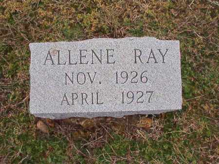 RAY, ALLENE - Dallas County, Arkansas | ALLENE RAY - Arkansas Gravestone Photos