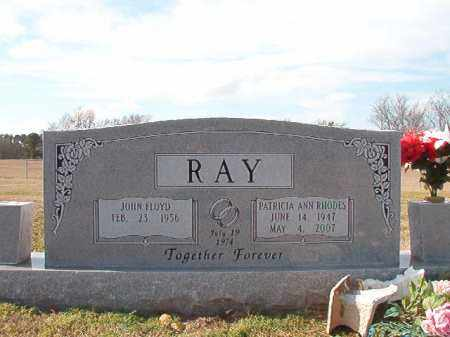 RAY, PATRICIA ANN - Dallas County, Arkansas | PATRICIA ANN RAY - Arkansas Gravestone Photos