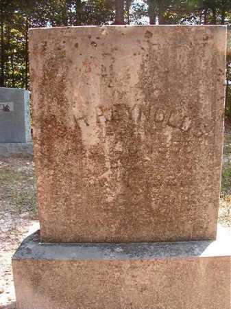 REYNOLDS, J H - Dallas County, Arkansas | J H REYNOLDS - Arkansas Gravestone Photos