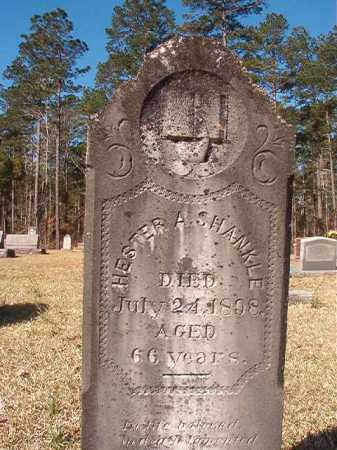 SHANKLE, HESTER A - Dallas County, Arkansas | HESTER A SHANKLE - Arkansas Gravestone Photos