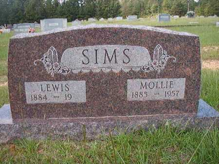 SIMS, LEWIS - Dallas County, Arkansas | LEWIS SIMS - Arkansas Gravestone Photos