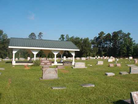 *SPARKMAN CEMETERY, OVERVIEW - Dallas County, Arkansas | OVERVIEW *SPARKMAN CEMETERY - Arkansas Gravestone Photos