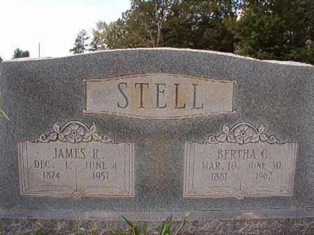 STELL, BERTHA G - Dallas County, Arkansas | BERTHA G STELL - Arkansas Gravestone Photos