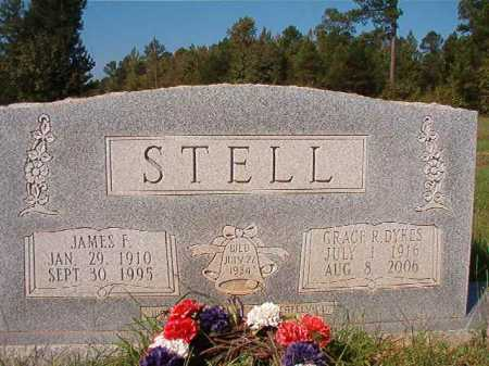 STELL, JAMES F - Dallas County, Arkansas | JAMES F STELL - Arkansas Gravestone Photos