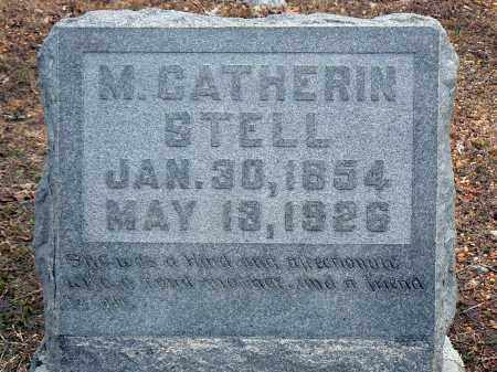 STELL, MARY CATHERIN - Dallas County, Arkansas | MARY CATHERIN STELL - Arkansas Gravestone Photos