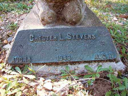 STEVENS, CHESTER L - Dallas County, Arkansas | CHESTER L STEVENS - Arkansas Gravestone Photos