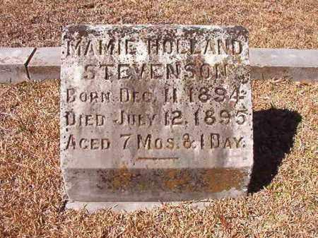 STEVENSON, MAMIE HOLLAND - Dallas County, Arkansas | MAMIE HOLLAND STEVENSON - Arkansas Gravestone Photos