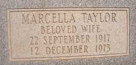 TAYLOR STOLZ, MARCELLA - Dallas County, Arkansas | MARCELLA TAYLOR STOLZ - Arkansas Gravestone Photos
