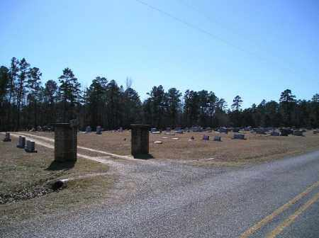*STONEY POINT CEMETERY,  - Dallas County, Arkansas |  *STONEY POINT CEMETERY - Arkansas Gravestone Photos