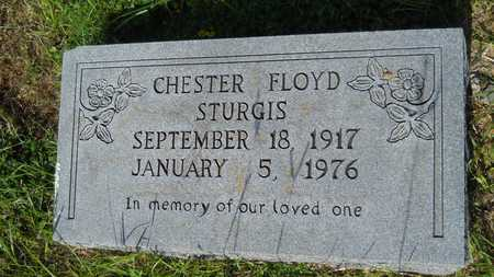 STURGIS, CHESTER FLOYD - Dallas County, Arkansas | CHESTER FLOYD STURGIS - Arkansas Gravestone Photos