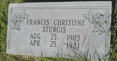 STURGIS, FRANCIS CHRISTINE - Dallas County, Arkansas | FRANCIS CHRISTINE STURGIS - Arkansas Gravestone Photos
