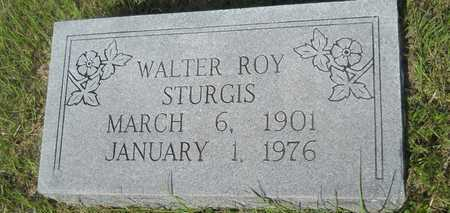 STURGIS, WALTER ROY - Dallas County, Arkansas | WALTER ROY STURGIS - Arkansas Gravestone Photos