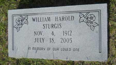 STURGIS, WILLIAM HAROLD - Dallas County, Arkansas | WILLIAM HAROLD STURGIS - Arkansas Gravestone Photos