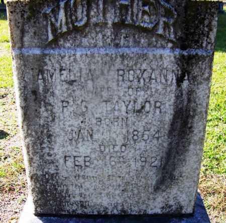 TAYLOR, AMELIA ROXANNA - Dallas County, Arkansas | AMELIA ROXANNA TAYLOR - Arkansas Gravestone Photos
