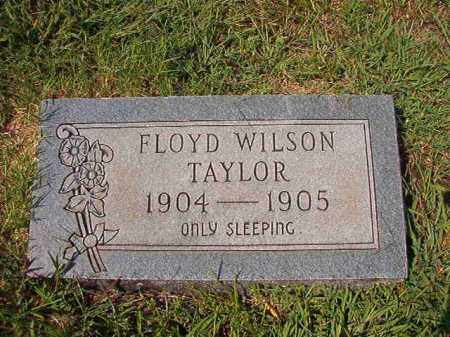 TAYLOR, FLOYD WILSON - Dallas County, Arkansas | FLOYD WILSON TAYLOR - Arkansas Gravestone Photos