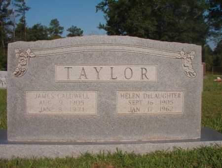DELAUGHTER TAYLOR, HELEN - Dallas County, Arkansas | HELEN DELAUGHTER TAYLOR - Arkansas Gravestone Photos
