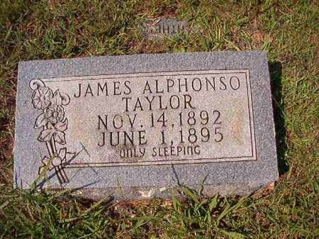 TAYLOR, JAMES ALPHONSO - Dallas County, Arkansas | JAMES ALPHONSO TAYLOR - Arkansas Gravestone Photos