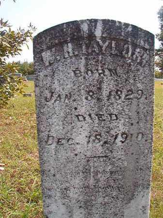 TAYLOR, W H - Dallas County, Arkansas | W H TAYLOR - Arkansas Gravestone Photos