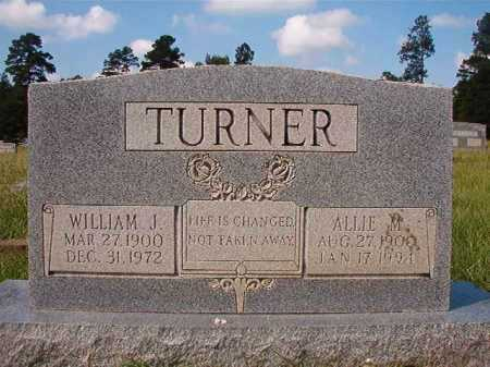TURNER, ALLIE M - Dallas County, Arkansas | ALLIE M TURNER - Arkansas Gravestone Photos