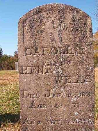 WELLS, CAROLINE - Dallas County, Arkansas | CAROLINE WELLS - Arkansas Gravestone Photos