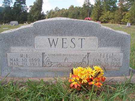 WEST, EFFIE - Dallas County, Arkansas | EFFIE WEST - Arkansas Gravestone Photos