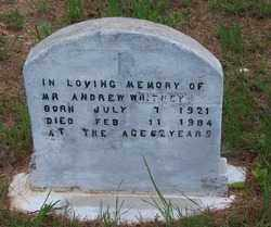 WHITNEY, ANDREW - Dallas County, Arkansas | ANDREW WHITNEY - Arkansas Gravestone Photos