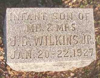 WILKINS, INFANT SON - Dallas County, Arkansas | INFANT SON WILKINS - Arkansas Gravestone Photos