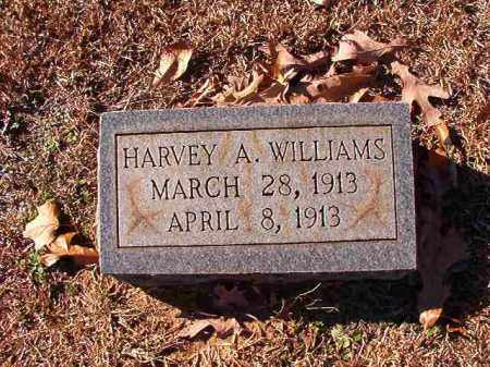 WILLIAMS, HARVEY A - Dallas County, Arkansas | HARVEY A WILLIAMS - Arkansas Gravestone Photos