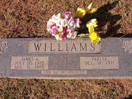 WILLIAMS, JAMES A - Dallas County, Arkansas | JAMES A WILLIAMS - Arkansas Gravestone Photos