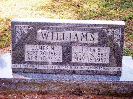WILLIAMS, JAMES M - Dallas County, Arkansas | JAMES M WILLIAMS - Arkansas Gravestone Photos