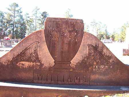 WILLIAMS, MARSHALL M - Dallas County, Arkansas | MARSHALL M WILLIAMS - Arkansas Gravestone Photos